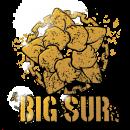 Настроение: Операция Big Sur