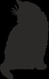 Настроение: Черный кот