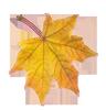 Настроение: Осенний лист