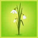 Настроение: Весна